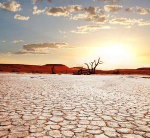 Suchosc i bolesnośc pochwy - norma w okresie klimakterium
