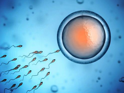Antykoncepcja długoterminowa i dla nieródek