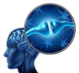Choroby autodegeneracyjne - utrata pamięci