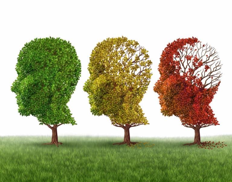 Demencja a choroba Alzheimera – zaburzenia funkcji poznawczych