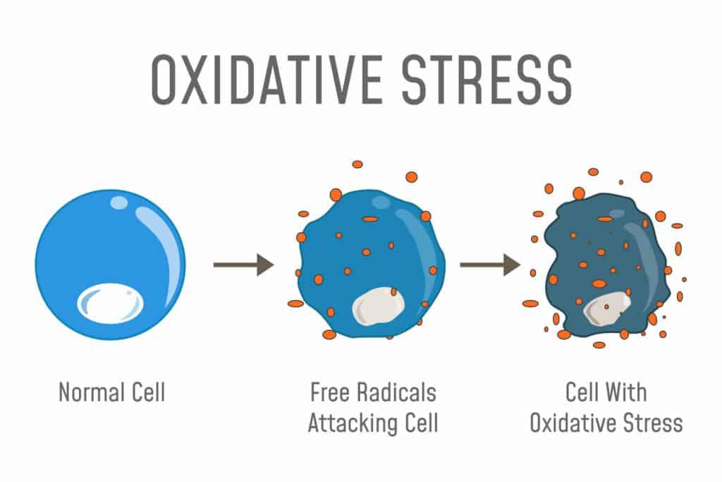 ozonoterapia - kontrolowany stres oksydacyjny