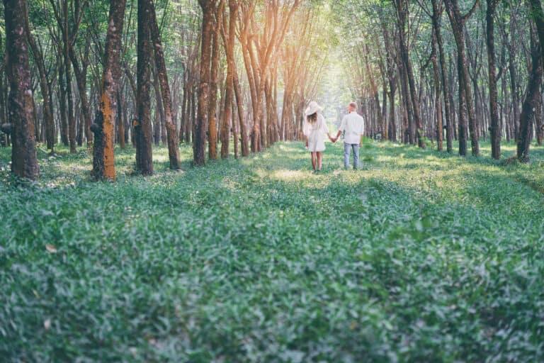 Las, ciało i namiętność